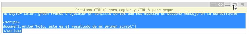 Copiar código desde el visor